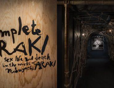 Musée du sexe Araki